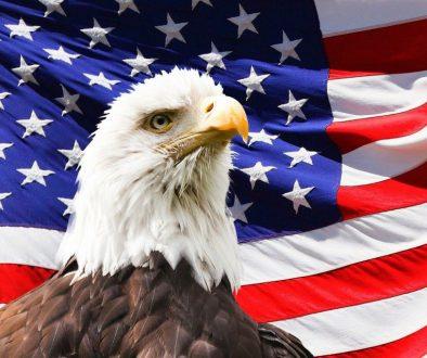 America Eagle