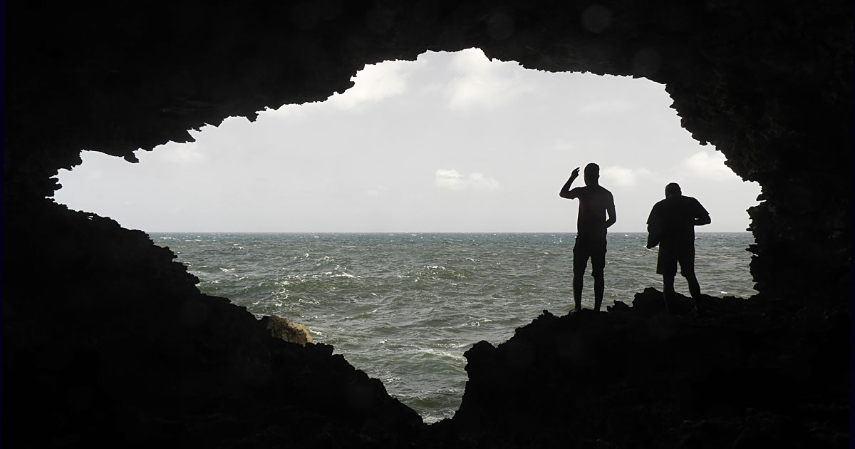 Animal Flower Cave, Barbados